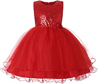 JiaDuo Baby Girl Lace Mesh Tutu Dress Sequin Bow Toddler Princess Gown