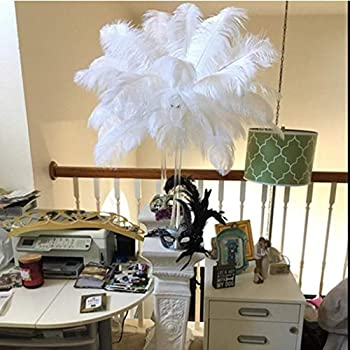 Shekyeon 14-16inch 35-40cm Ostrich Feathers Plumes for Table Decoration Pack of 10  White