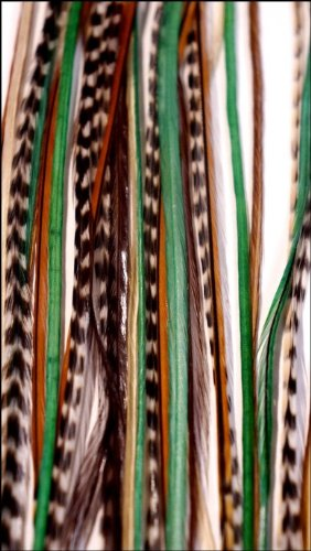 grizzly-extensions easyin Forest pour cheveux blonds