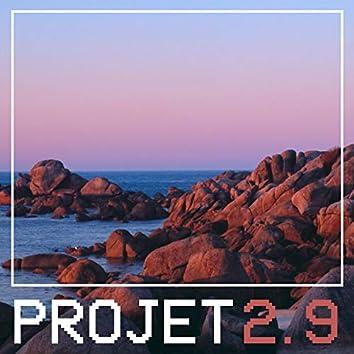 Projet 2.9 (feat. Majzik)