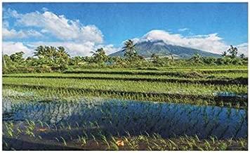 Best garden landscape ideas philippines Reviews