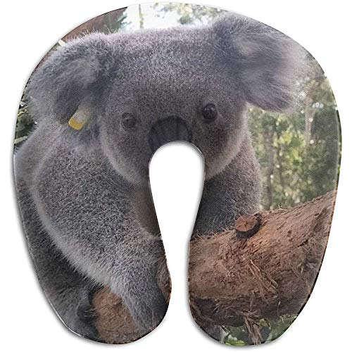 Schiuma di Memoria Della cassa del cuscino a Forma di U del Koala sveglia, dolore del cuscino del Resto di viaggio di viaggio, morbido traspirante confortevole regolabile