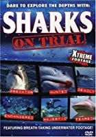 Sharks: On Trial [DVD]