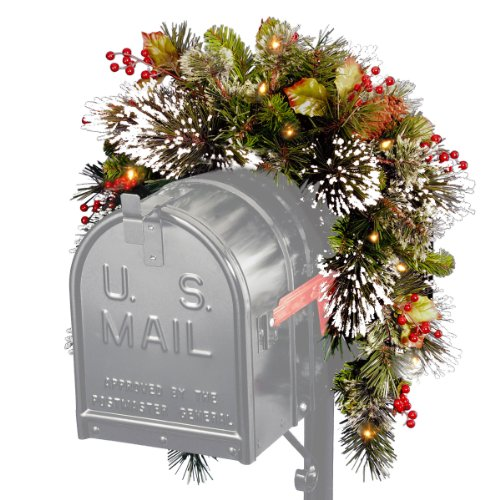 National Tree Wintery Pine Collection Mailbox Swag, 3 Foot