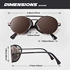 Polarised Sunglasses for Women Men Steampunk Retro Round Unisex Eyewear Glasses UV400,2020 New Trendy Side Shield Goggles Gothic Sun Gasses Brown Frame Brown Lens CGID #4
