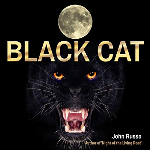 Black Cat  By  cover art