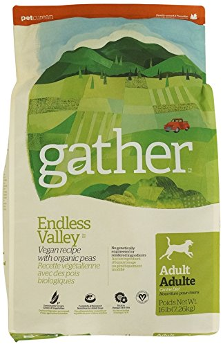 Petcurean Gather Endless Valley Vegan Recipe Dry Dog Food - 16 lb. Bag