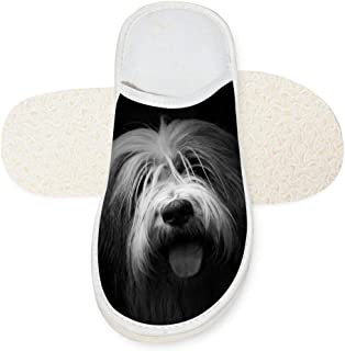 Aslgisy Indoor Shoes,Creative Cool Black-White Dog Protruding Tongue Car Auto Motor Racing Print Slippers for House/Home