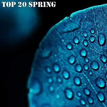 TOP 20 Spring