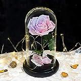 WPJ Forever Rose, Flores para Siempre Cristal Rosa Glamoroso, Rosas en Base de Cúpula de Vidrio, Regalo del Día de la Madre, Cinturón de Linterna de Plata de Árbol Fuego de Flor Rosa