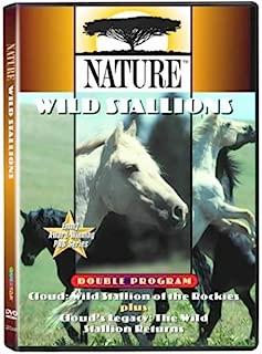 Cloud:(Wild Stallions of the Rockies / Cloud's Legacy: The Wild Stallion Returns)