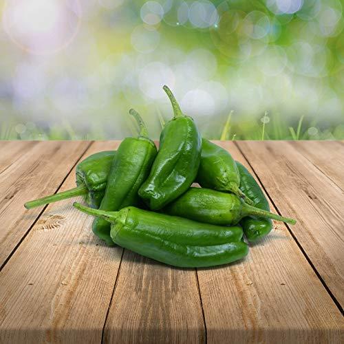 Pimientos de Padron/Pimento Padron 25 x Samen in 100% Naturqualität - mild zum fühlen, grillen, braten, als Vorspeise