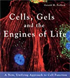 Pollack, G: Cells, Gels & the Engines of Life - Gerald H. Pollack