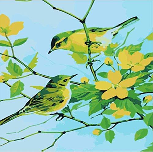HAON DIY Nummer Schilderen Dier gele pruim vogel Olieverf op Nummer Kit Tekening op Canvas voor Kinderen Volwassenen Beginner Frameloze woondecoratie 16X20 inch