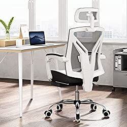 Ergonomic Home Office Chairs -- Hbada Ergonomic High-Back Office Chair