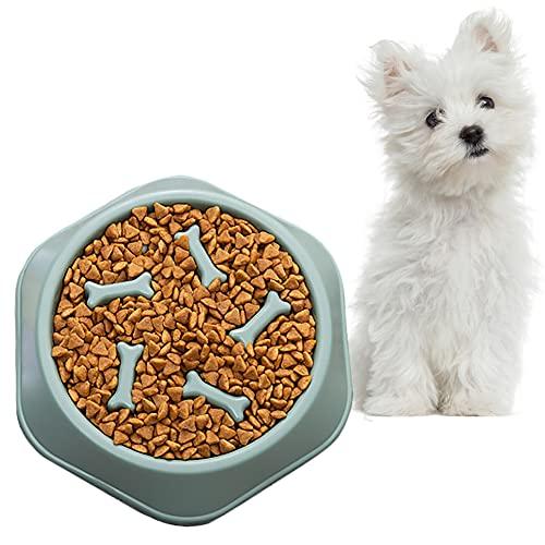 All--In Hundenapf Langsam Fressnapf Hund Interaktiv Antischling Kunststoff rutschfest Fütterung Napf