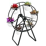 Hopestar 2.83 inch Succulent Pots with Drainage, White Mini Ceramic Flower Planter Pot with Plant Stand (Black)