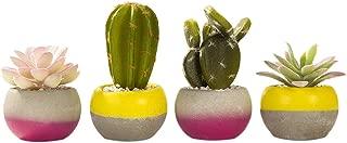 Talking Tables Fiesta Cactus Décor for a General Decoration, Multicolor (4 Count)