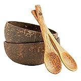 Nicola Spring 4 piezas de coco natural Bowl & Spoon Set - Eco friendly reutilizable reciclado de fideos Acai Buda cuencos - Brown