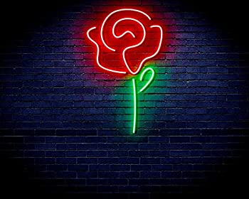 ADVPRO Rose Flower Women Room Decor Flex Silicone LED Neon Sign Green & Red st16s32-fnu0034-gr