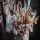 Dutch Masters in Dried Flowers Trockenblumenstrauß Creamy Pastel   EIN Hingucker in jeder Vase   Trockenblumen und Trockengräser Pastellfarben   65 cm   Deko Blumenstrauß - 6