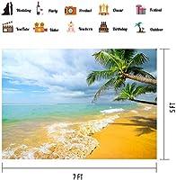 HD 10x7ftハワイサンドビーチの背景ビニールヤシの木白い雲背景テーマポートレート写真の小道具BJQQPH124
