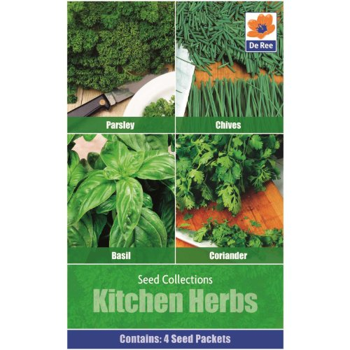 Collections de semences de Legumes de cuisine Lot de 4 en 1 herbes