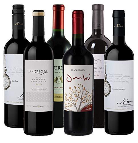 Atlantik Weine, Südamerika Rotwein Probierpaket, Weinpaket mit Tannat Malbec Syrah und Cabernet Sauvignon aus Argentinien und Uruguay (6x0,75l)