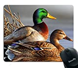 Smooffly Mandarin Duck Bird Mouse Pad Customized Rectangle Non-Slip Rubber Mouse mat