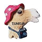 Tunesien Afrika 3D Kühlschrankmagnet Touristen-Souvenir Geschenk & Sammlung Haus & Küche Dekoration Magnet Sticker Tunesien Kühlschrankmagnet