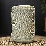 LIUL 500 G/Roll Summer Crochet Raffia Yarn Casual Straw Cord For Hand Knitting Yarn Sun Hat Material, Blanco como la Leche