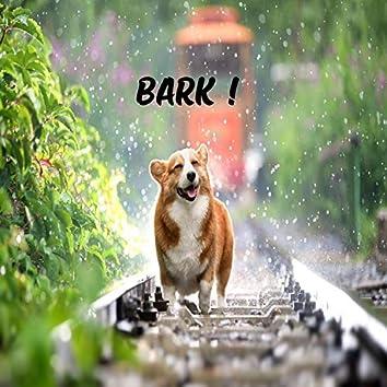 Bark !