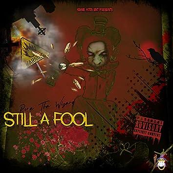 Still a Fool