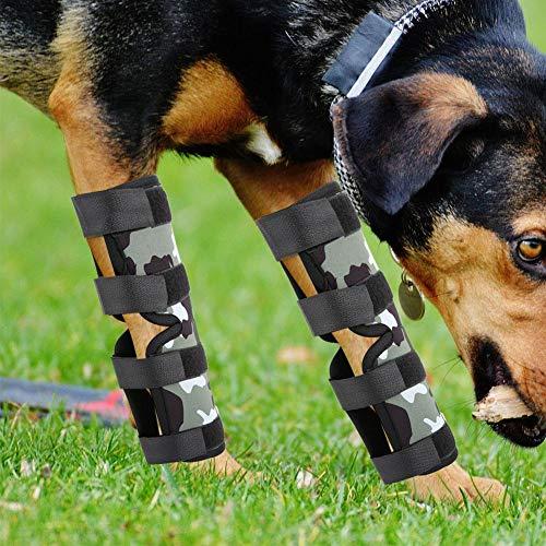 DAUERHAFT Pet Hock Protector, Hundebeinstütze, Kniebeugung bei Verletzungen reduzieren(Camouflage, XL)