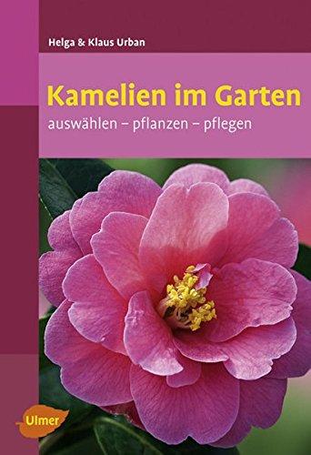 Kamelien im Garten: Auswählen, pflanzen, pflegen