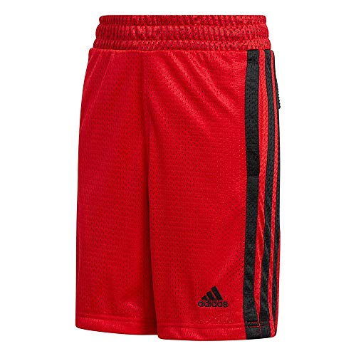 adidas Pantalón Corto Modelo Y LGD BB Short Marca