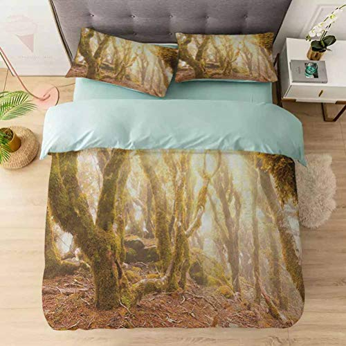Aishare Store Duvet Cover Sets, Morning Sun Rays Mist in Virgin Mountain Forest Moss on Trees Natural Pa, Comforter Cover Bedding Set 3 Pieces (1 Duvet Cover + 2 Pillow Shams), Green Brown