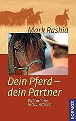TOP 10 Geschenketipps für Pferdemenschen 1
