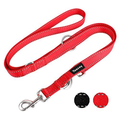 Toozey Premium Hundeleine Doppelleine - 3-Fach Verstellbar&Reflektierend - 2m Robustes Nylon Hundeleine für Klein/Mittel/Große und Wild Hunde