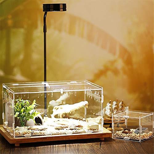 S-tubit Transparente Reptilienzuchtbox, Acryl-Reptilienbox, Reptilien-Terrarium für Schlange/Spinne/Eidechse/Skorpion/Hundertfüßer Biological