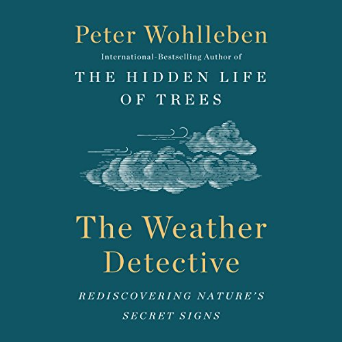 Page de couverture de The Weather Detective