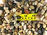 RG() 1 Pack: Polished Mixed Color Stones Small Decorative River Rock Stones 1LBS (Small)