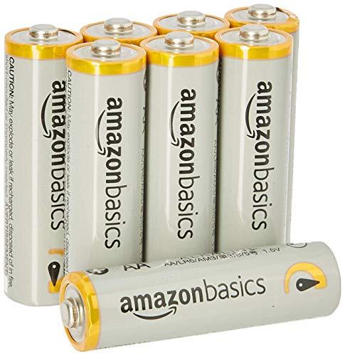 Grundig City 31 Tragbares Radio (UKW-/MW-Tuner) Chrome & Amazon Basics Performance Batterien Alkali, AA, 8 Stück (Design kann von Darstellung abweichen)