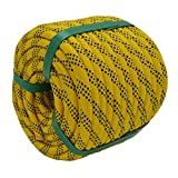 YUZENET Braided Polyester Rigging Rope (3/8 in X 100 ft) Strong Pulling Rope for Arborist Sailing Gardening Swings, Yellow/Black