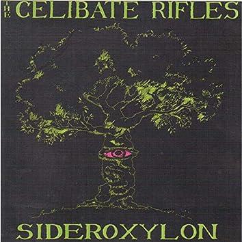 Sideroxylon (2021 Remastered)