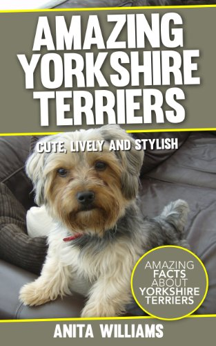 AMAZING YORKSHIRE TERRIERS: A Children's Book About Yorkshire Terriers Dogs and their 12 Amazing Facts, Figures, Pictures and Photos: (Dog Books For Kids)
