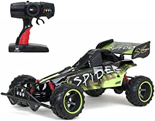 baja extreme spider rc buggy