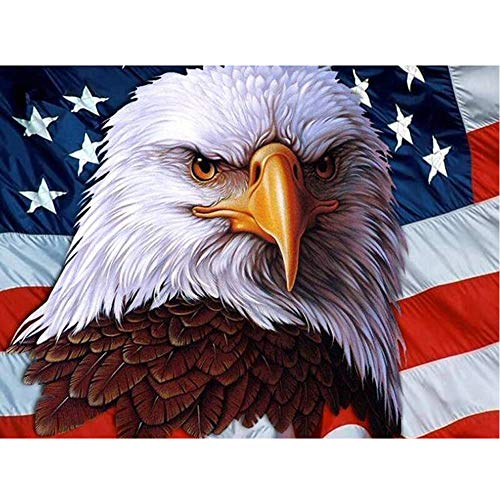 DIY 5D Diamond Painting Kits for Adults, Full Drill Round Rhinestone Embroidery Paint for Kids, Home Wall Decor Cross Stitch Arts Number by Aunkun (Colorful Bald Eagle Flag 13.3x17.3inch)