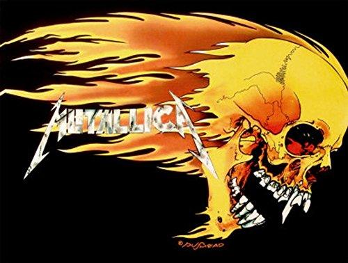 LPGI - Bandera de tela, 76 x 101 cm, diseño de calavera en llamas de Metallica