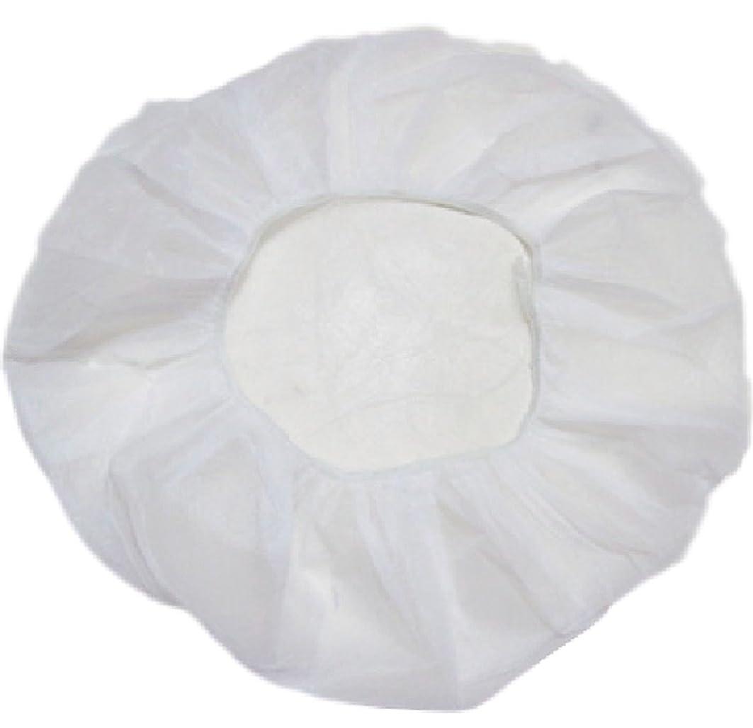 もっともらしい馬鹿げた電極業務用 不織布 ヘアキャップ 使い捨て 衛生 食品 加工 工場 大きめ (100個, 白)
